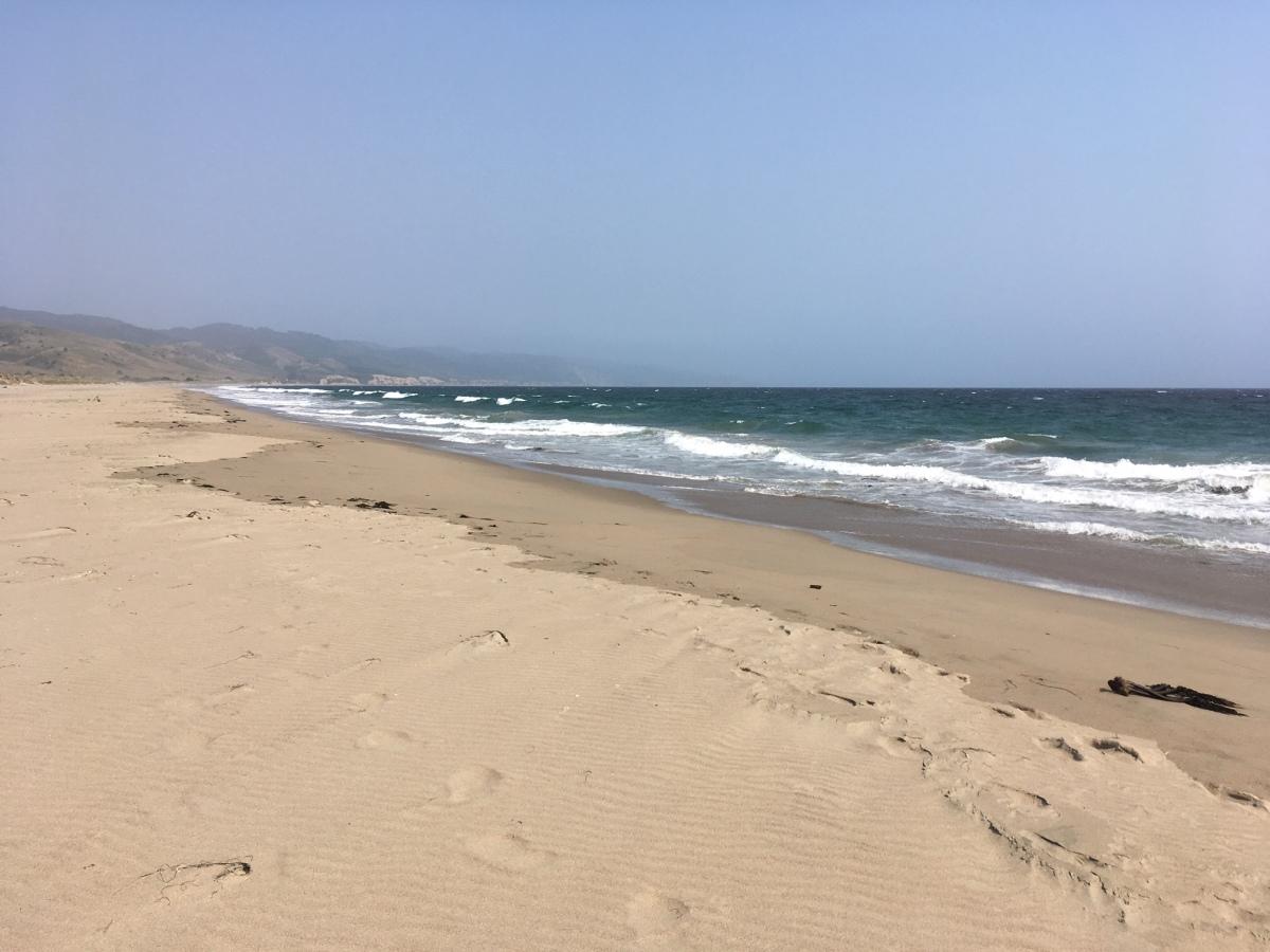 Limantour Beach Point Reyes Seashore